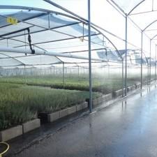 plasticos solanas agricultura